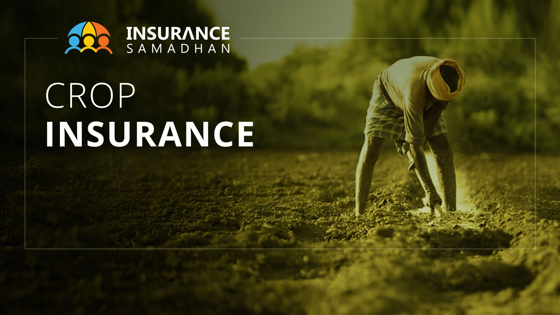 Crop Insurance: Pradhan Mantri Fasal Bima Yojana (PMFBY) Details & Benefits